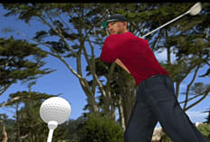 Tiger Woods PGA Tour 2001 screen shot 1