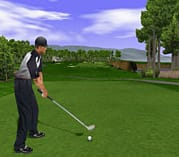 Tiger Woods PGA Tour 2001 screen shot 3