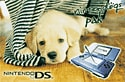Blue Nintendo DS Console with Nintendogs - Labrador DSi and DS Lite
