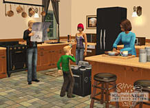 The Sims 2 Kitchen & Bathroom Interior Design Stuff screen shot 6