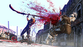 Ninja Gaiden II screen shot 4