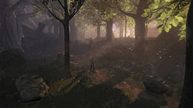 Fable II screen shot 1