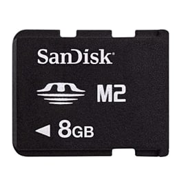 SanDisk 8GB M2 Gaming Card Accessories