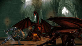 Dragon Age Origins: Awakening screen shot 5