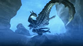 Monster Hunter Tri screen shot 3