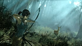 Tomb Raider screen shot 6