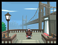 Pokemon Black Version screen shot 5