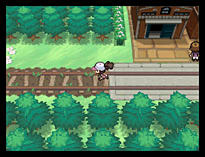 Pokemon White Version screen shot 1