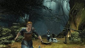 The Lord of the Rings: War in the North screen shot 3