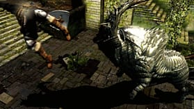 Dark Souls Limited Edition screen shot 4