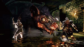 Dark Souls Limited Edition screen shot 14