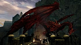 Dark Souls Limited Edition screen shot 15