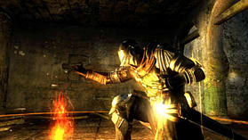 Dark Souls Limited Edition screen shot 17