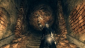Dark Souls Limited Edition screen shot 19