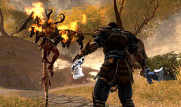 Kingdoms of Amalur: Reckoning screen shot 24