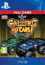 Calling All Cars! PlayStation Network