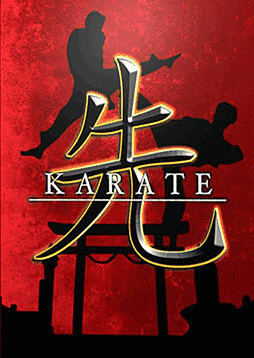 Karate 3D PC Cover Art
