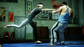 Sleeping Dogs screen shot 10