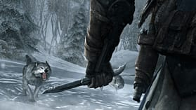Assassin's Creed III screen shot 4