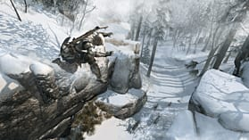 Assassin's Creed III screen shot 7
