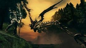 Dark Souls: Prepare to Die Edition screen shot 1