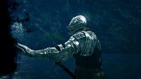 Dark Souls: Prepare to Die Edition screen shot 2