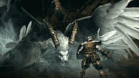 Dark Souls: Prepare to Die Edition screen shot 5