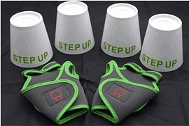 Wii Fit Step Up Pro Pack Accessories