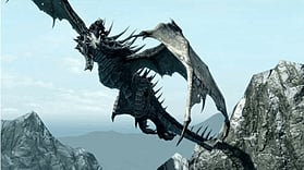 The Elder Scrolls V: Skyrim Legendary Edition screen shot 4