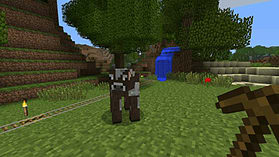 Minecraft screen shot 1