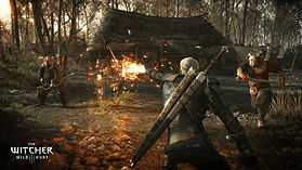 The Witcher 3: Wild Hunt screen shot 2