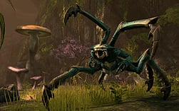 The Elder Scrolls Online screen shot 2