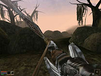 The Elder Scrolls III: Morrowind Game of the Year Edition screen shot 1