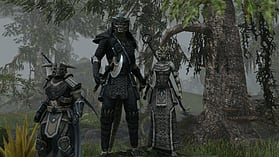 The Elder Scrolls Online screen shot 11