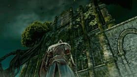 Dark Souls II screen shot 6