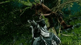 Dark Souls II screen shot 12