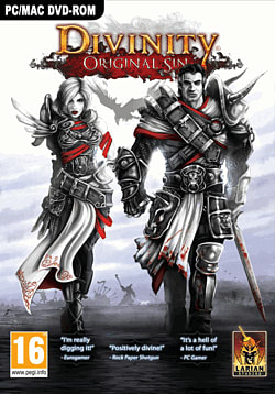 Divinity: Original Sin PC Games