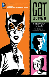 Catwoman Volume 3: Death of the Family TP (The New 52) (Paperback) Books