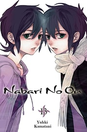 Nabari No Ou, Vol. 13 (Paperback) Books