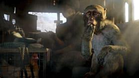 Far Cry 4 Season Pass (PS3) screen shot 3
