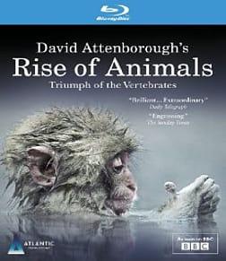 David Attenborough's Rise of Animals: Triumph of the Vertebrates Blu-ray