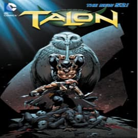Talon Vol. 2: The Fall of the Owls (The New 52) (Paperback) Books