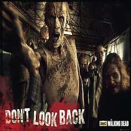The Walking Dead Don't Look Back Poster 91.5x61cm Posters
