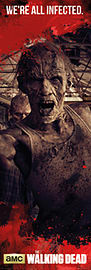 The Walking Dead Zombies Door Poster Memorabilia