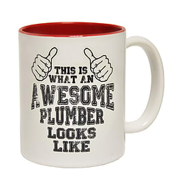 123t Mugs THIS IS WHAT AN AWESOME PLUMBER LOOKS LIKE Ceramic Slogan Cup With Red Interior Home - Tableware