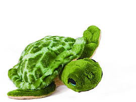 Petjes Mini Turtle Soft Toy 13cm Pre School Toys