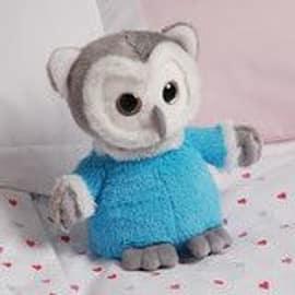 Aroma Home Sparkly Eyes Hottie Owl Pre School Toys