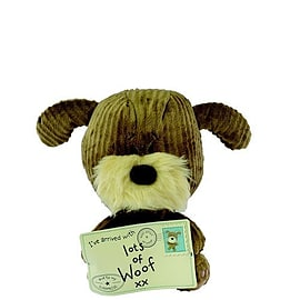 Lots of Woof Mail Large Pre School Toys