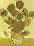 National Gallery - Vincent Van Gogh 2x500pc screen shot 2