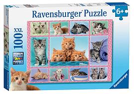 Cute Kittens, XXL 100 Traditional Games